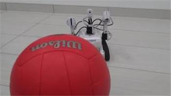 DJ's Roli Rover Robot Chasing Red Ball