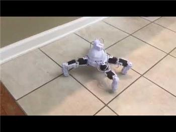 Ezang's My New Robot - Spider Bot