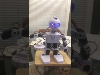 Ezang's Let's Have Some JD Robot With Voice Commands
