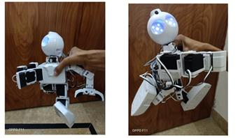 Test The Proper Functionality Of JD Humanoid Robot