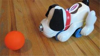 DJ's Robot Dog Chases Ball