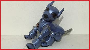 Steve's Eddie. The I-Cybie & Ez-Robot Mongrel Robot Dog