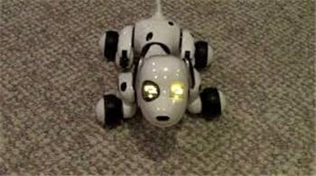 Zoomer Dog Robot , Very Cool Toy To Hack
